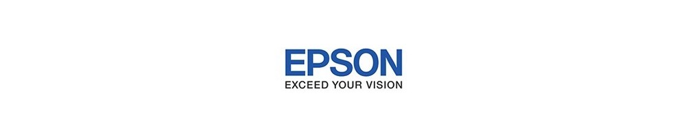 TINTAS EPSON D700